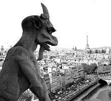 Notre Dame Gargoyle by kalina813