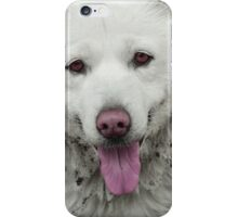 The beauty... iPhone Case/Skin
