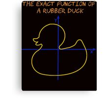 Harry Potter The exact function of  a rubber duck Canvas Print