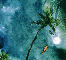 Reflections of Paradise by elayne001