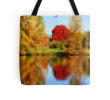 Fall Colors in Eugene Tote Bag