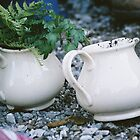 a teapot to plant by VICKIE GAMBLE