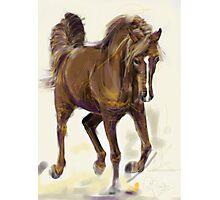 Horse Hazel Photographic Print