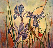 Iris douglasiana by Maizajean