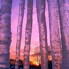 Sunrise Reflections - Icicles seen from the Window by Geno Rugh