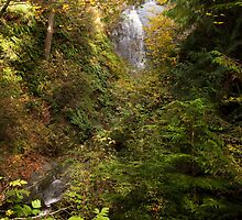 Hertz Trail Waterfall by Appel