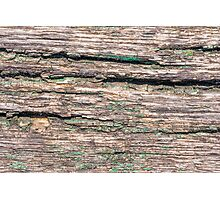 Old Wood Texture Photographic Print