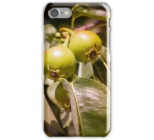 Young Green Pears iPhone Case/Skin