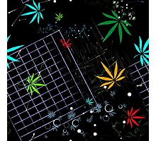 Colorful Marijuana Leaves and Grid Photographic Print