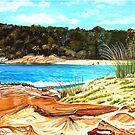 Bird's Eye View, Mill Beach, Australia by Linda Callaghan