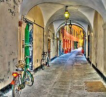 bicycle in the alley by oreundici