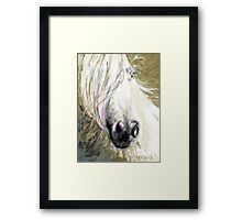 Horse blowing in the wind Framed Print