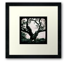 The things I've seen... Framed Print