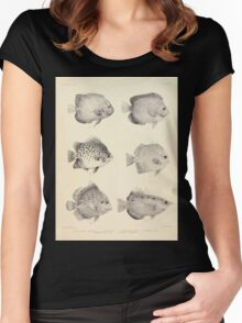 The fishes of India by Francis Day 027 - Holacanthus Annularis, H Xanthurus, Scatophagus Argus, Ephippus Orbis, Drepane Punctata, Toxotes Chatareus Women's Fitted Scoop T-Shirt