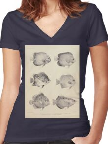 The fishes of India by Francis Day 027 - Holacanthus Annularis, H Xanthurus, Scatophagus Argus, Ephippus Orbis, Drepane Punctata, Toxotes Chatareus Women's Fitted V-Neck T-Shirt