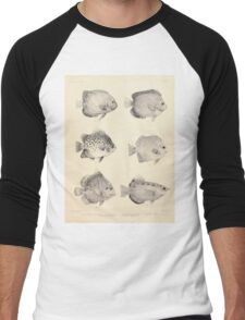 The fishes of India by Francis Day 027 - Holacanthus Annularis, H Xanthurus, Scatophagus Argus, Ephippus Orbis, Drepane Punctata, Toxotes Chatareus Men's Baseball ¾ T-Shirt