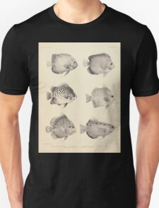 The fishes of India by Francis Day 027 - Holacanthus Annularis, H Xanthurus, Scatophagus Argus, Ephippus Orbis, Drepane Punctata, Toxotes Chatareus Unisex T-Shirt