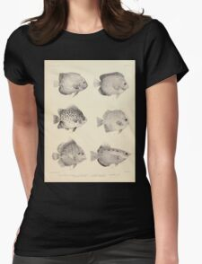 The fishes of India by Francis Day 027 - Holacanthus Annularis, H Xanthurus, Scatophagus Argus, Ephippus Orbis, Drepane Punctata, Toxotes Chatareus Womens Fitted T-Shirt