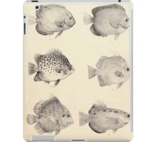 The fishes of India by Francis Day 027 - Holacanthus Annularis, H Xanthurus, Scatophagus Argus, Ephippus Orbis, Drepane Punctata, Toxotes Chatareus iPad Case/Skin