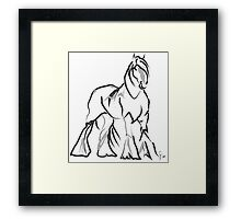 Horse Shire Framed Print