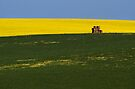 Stacks of colour by KathyT