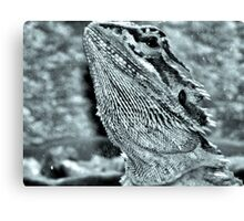 'Ozzy'  Baby Bearded Dragon Canvas Print