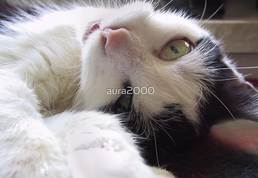 Cuddling Mousy by aura2000
