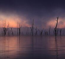 The Fog Bank by Kane Gledhill