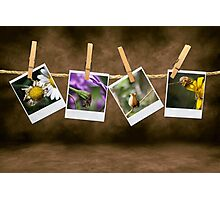Natura morta Photographic Print