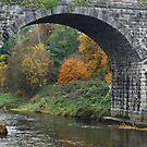 Autumn leaves through Navan bridge by Nancy Huenergardt