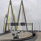 Fred Hartman Bridge by Susan Russell