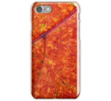 Autumn Maple Leaf Macro iPhone Case/Skin