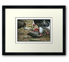 Cannibalism  Framed Print
