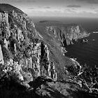 Cape Raoul, Tasmania 2 by Andrew Smyth