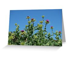 Thistle me whistle Greeting Card