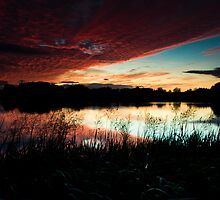 Cossington South Lakes by Andy Stafford