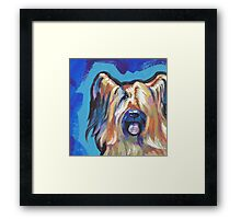 Briard Dog Bright colorful pop dog art Framed Print