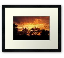 Sunset Through Trees Framed Print