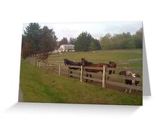 On the Farm Greeting Card