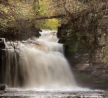Cauldron Falls - Autumn by SteveMG