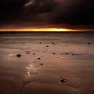 Sliver by James Coard