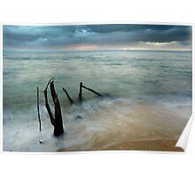 Washed Up - beach log at Ella Bay Poster