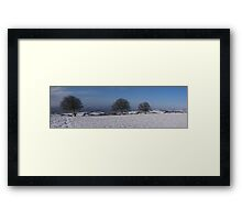 Snowy scene with 3 trees Framed Print