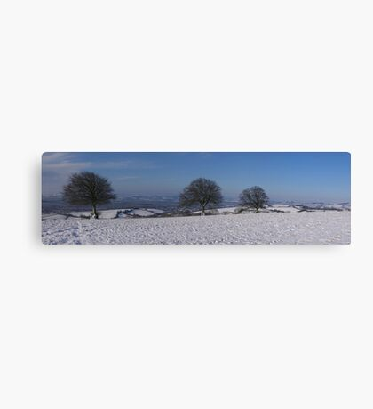 Snowy scene with 3 trees Canvas Print