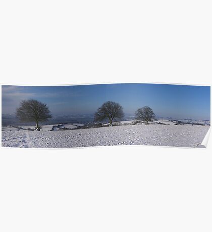 Snowy scene with 3 trees Poster