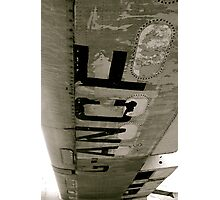 Flightless Photographic Print