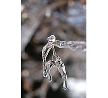 iceman - twigs and ice  Photographic Print