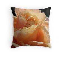 Nestling Nectarine Petals Throw Pillow