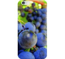redwine harvest iPhone Case/Skin