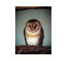 Masked Owl Art Print